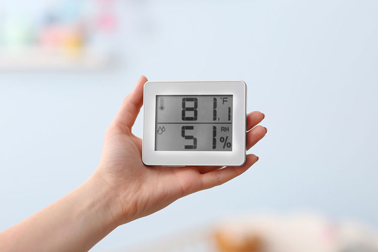 High Humidity In Your Home