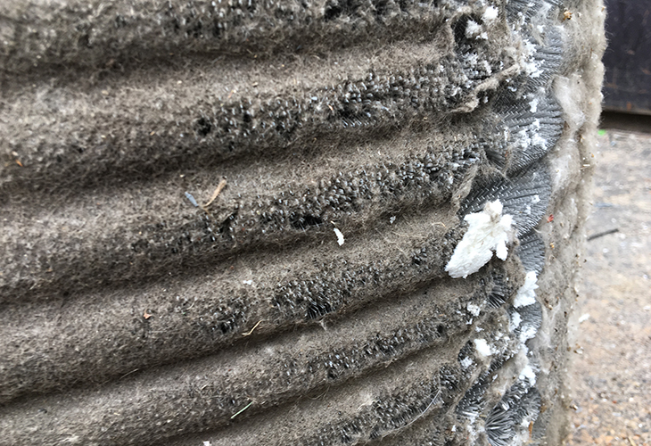 Neglected air conditioner coil