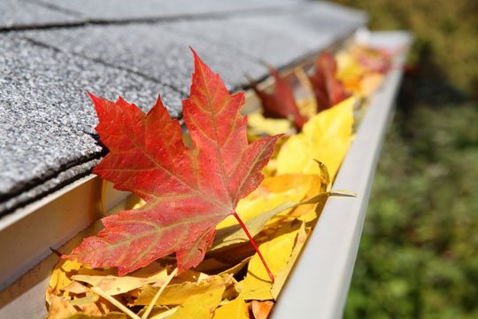 Fall Home Maintenace