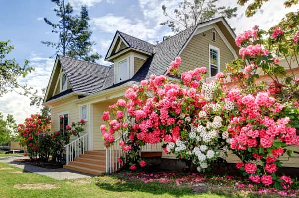 Ways To Alleviate Spring Allergies Inside Your Home