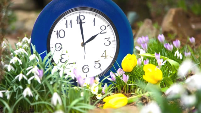 spring forward hvac tips