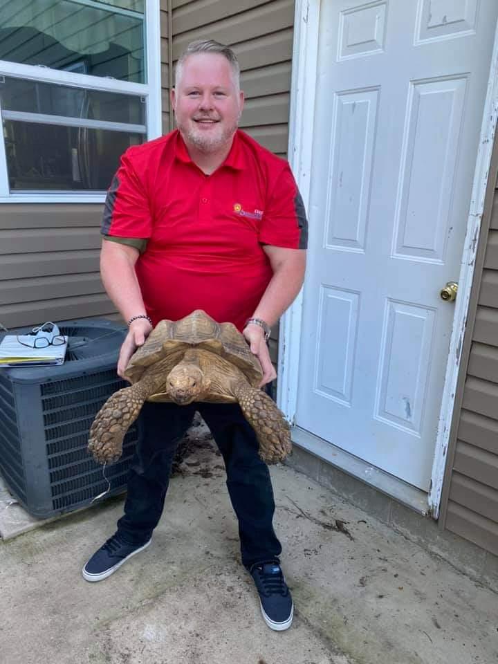 Trane Air Conditioners & Tortoises: A Comparison To Shell-ebrate