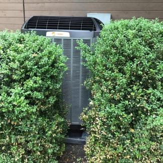 Trane Heat Pump Replacement