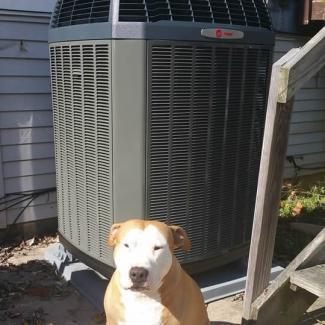 air handler and heat pump in batavia oh